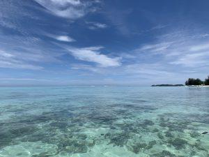 【2020年3月20日4泊5日】ワンランク上の自分になる特別な島旅 アイランドワーク in ボルネオ島